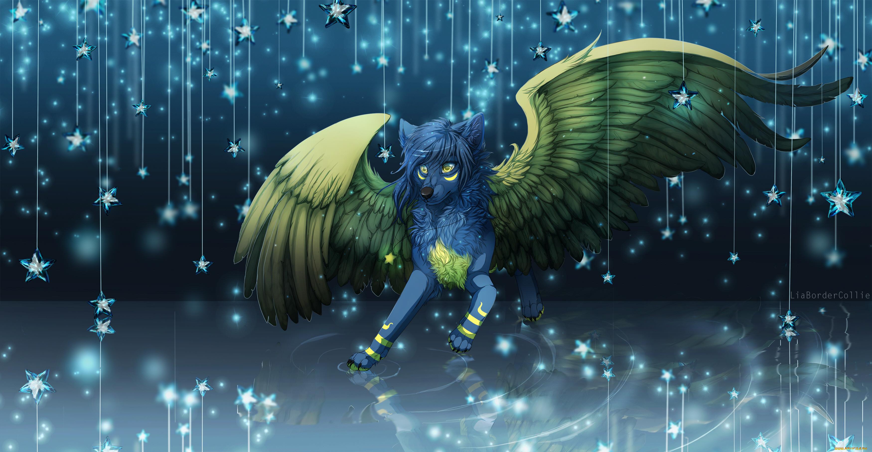 выбирайте волшебные коты с крыльями картинки существу замораживаете